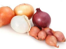 Garlic and onions antitumor allies should not miss in your diet
